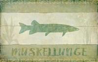 Muskellunge Fine Art Print