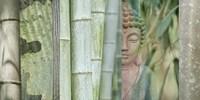 Buddha Bamboo Fine Art Print