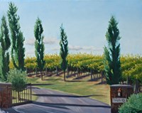 VaPiano Vineyard Fine Art Print