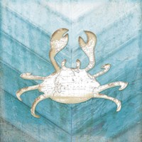Coastal Crab Fine Art Print