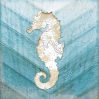 Coastal Seahorse Framed Print