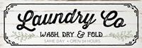 Laundry Co Fine Art Print