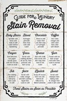 Stain Removal Guide Fine Art Print