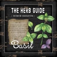 Herb Guide Basil Fine Art Print