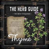 Herb Guide Thyme Fine Art Print