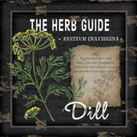 Herb Guide Dill Fine Art Print
