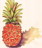 Orange Pineapple Fine Art Print