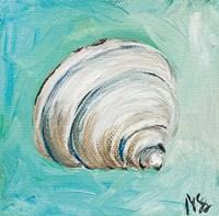 Shell Fine Art Print