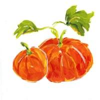 Pumpkin Patch I Fine Art Print