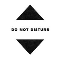 Do Not Disturb - Gamer Fine Art Print