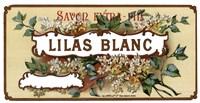 """Lilas Blanc by Clemente Micarelli - 12"""" x 6"""""""