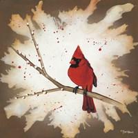 Weathered Friends - Cardinal Fine Art Print