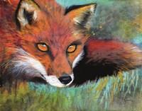 Fox Prowl Fine Art Print