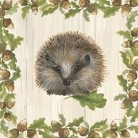 Woodland Critter VI Fine Art Print