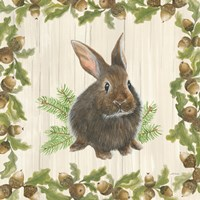 Woodland Critter IV Fine Art Print