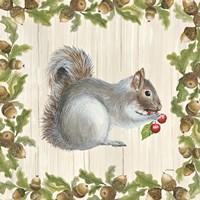 Woodland Critter III Fine Art Print