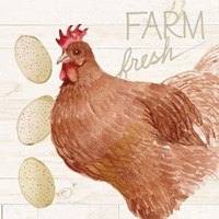 Life on the Farm Chicken II Fine Art Print