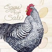 Life on the Farm Chicken I Framed Print