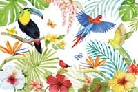 Treasures of the Tropics III Fine Art Print