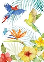 Treasures of the Tropics II Fine Art Print