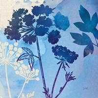 Blue Sky Garden III Fine Art Print
