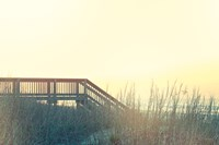 Boardwalk to the Beach Fine Art Print