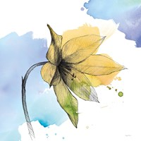 Watercolor Graphite Flower VIII Fine Art Print