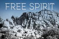 Ombre Adventure VI Free Spirit Framed Print