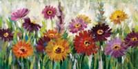 Jewel Daisy Gerbera Fine Art Print