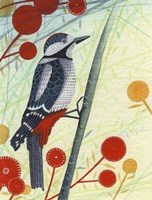 Woodpecker Fine Art Print