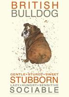 British Bulldog Fine Art Print