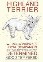 Highland Terrier Fine Art Print
