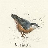Nuthatch Fine Art Print