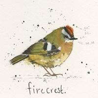 Firecrest Fine Art Print
