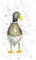 Duck 2 Fine Art Print