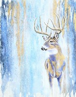 Winter Buck Fine Art Print