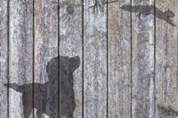 Lab  And Squirrel Shadow Fine Art Print