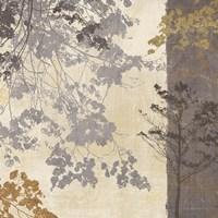 Country Shadows II Fine Art Print