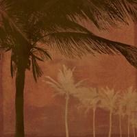 Caribbean Sun I Fine Art Print