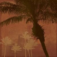 Caribbean Sun II Fine Art Print