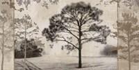 At Dawn III Fine Art Print