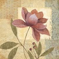 Romanza II Fine Art Print