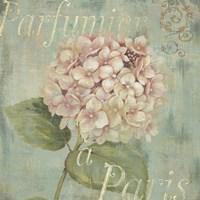 Vintage Fragrance IV Fine Art Print