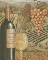 French Vineyard III Framed Print