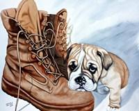 Boots Bulldog Fine Art Print