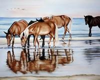 Horses On Beach Fine Art Print