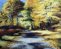 Fall's Path Fine Art Print