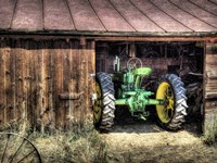 Deere in the Barn Fine Art Print