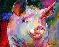 Pig 1 Fine Art Print