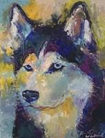 Husky Fine Art Print